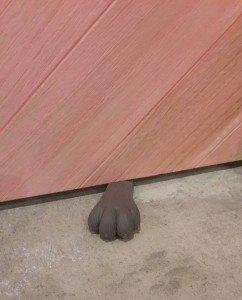 貓咪手掌門擋