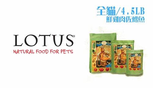 【買即送折價券】LOTUS樂特斯 慢焙貓乾糧飼料4.5LB 全貓-無穀鮮鴨佐田時蔬