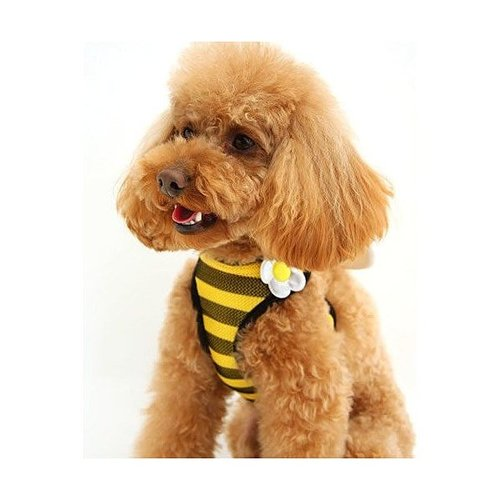 Pet Paradise 日本進口 narikiri pets 採蜜小蜜蜂 貓犬用網狀鞍帶胸背(附牽繩) 3S 透氣素材