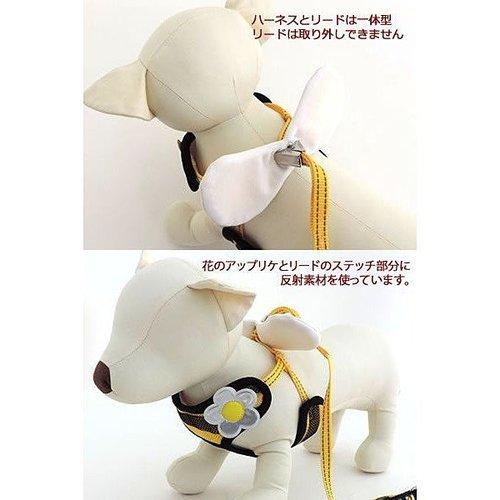 Pet Paradise 日本進口 narikiri pets 採蜜小蜜蜂 貓犬用網狀鞍帶胸背(附牽繩) S 透氣素材