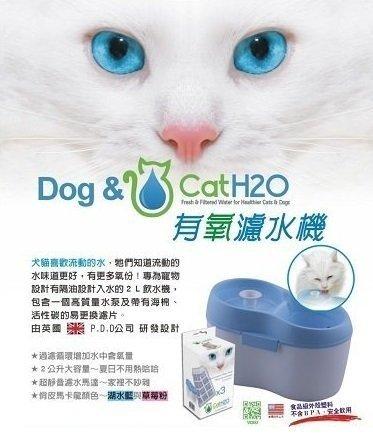 Dog&Cat H2O有氧濾水機/寵物飲水器/貓 狗自動循環喝水機/內含三片濾心2L 限加購一盒濾心
