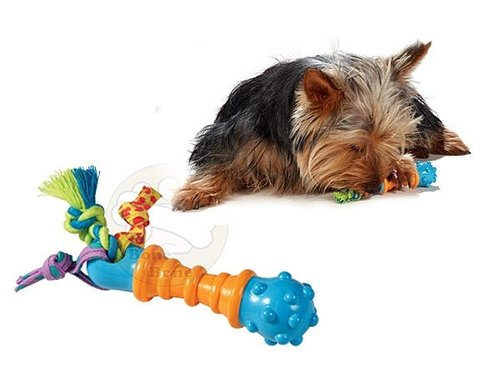 美國Petstages chew迷你健齒啞鈴/啃咬健齒系列/狗狗玩具/啃咬玩具