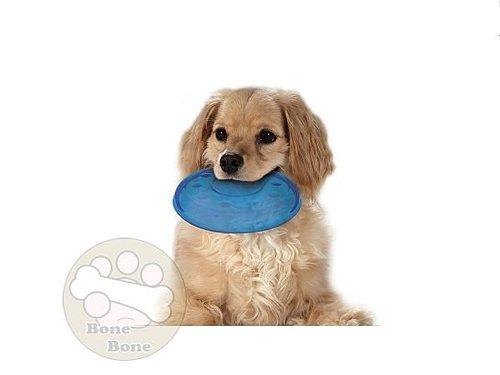 美國Petstages ORKA迷你飛盤/歐卡耐咬系列/狗狗玩具/啃咬玩具