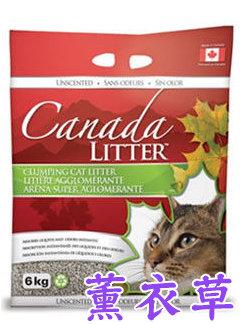 晶鑽同工廠-CANADA LITTER 加拿大紅鑽貓砂(薰衣草) 貓砂 貓砂盆 6kg 僅宅配