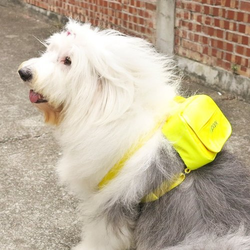 PPark -寵物背包(狗狗自己背)-黃色