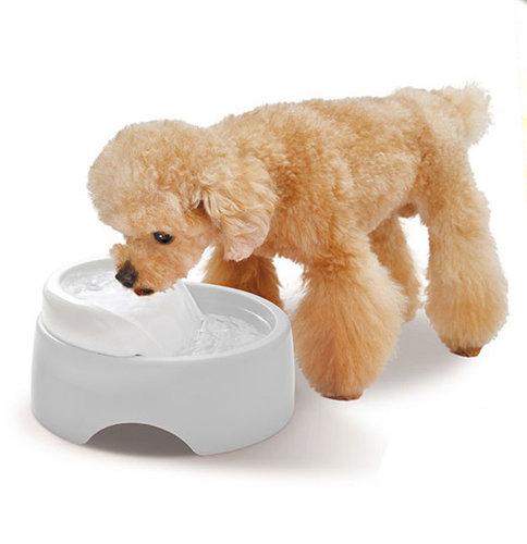 GEX 犬用循環式給水器 圓滿平安濾淨飲水皿 愛犬淨白 950ml 寵物狗電動飲水機器