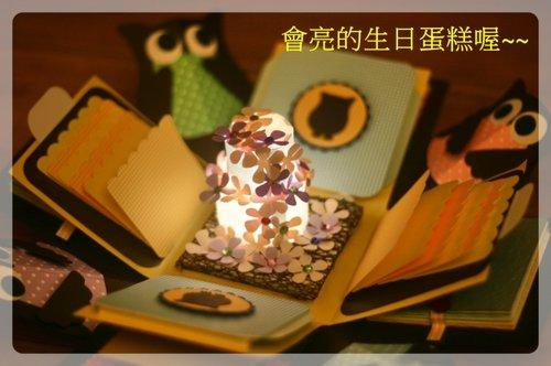 貓頭鷹LED生日禮物盒