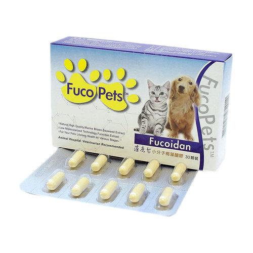 藻康留 (小盒)小分子褐藻醣膠 大劑量30顆 寵物膠囊 保健食品 貓犬保健品
