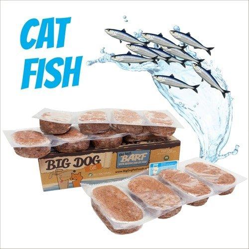 BIG DOG巴夫生食肉餅-公司貨付發票~貓用 鮮魚口味/急速冷凍 此商品為冷凍配送/限單筆運費寄送/下標前請詢問現貨