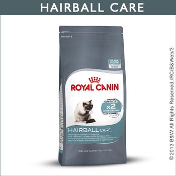 公司貨附發票 送市價$79肉泥餐包*1 台中歡迎自取 法國皇家Royal Canin/IH34 加強化毛貓專用飼料4KG 2包需宅配
