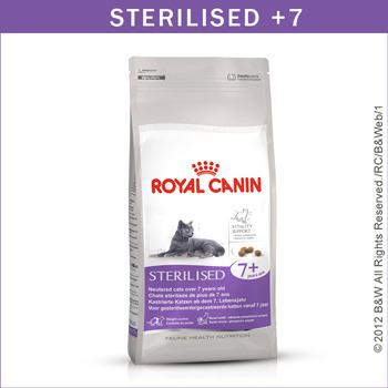 公司貨附發票 台中歡迎自取 法國皇家 Royal Canin/S36+7 絕育熟齡貓(7歲以上) 貓專用飼料 1.5KG 4包需宅配