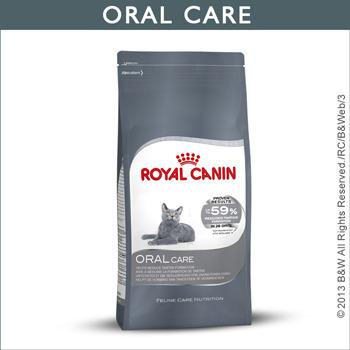 公司貨附發票 台中歡迎自取  法國 皇家Royal Canin/ O30 強效潔牙貓專用飼料3.5KG 2包需宅配