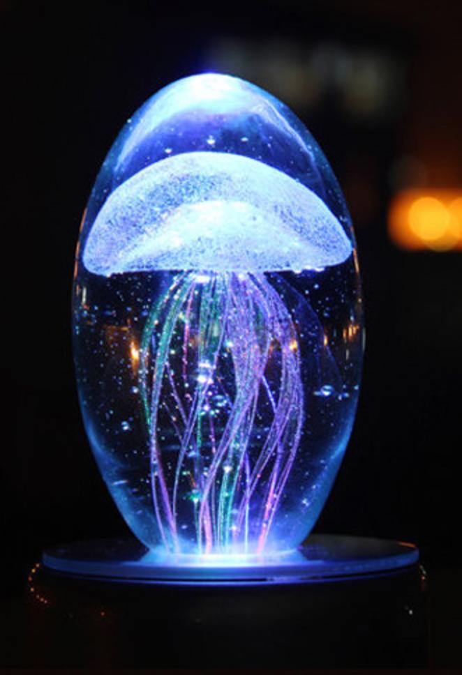 水晶球水母