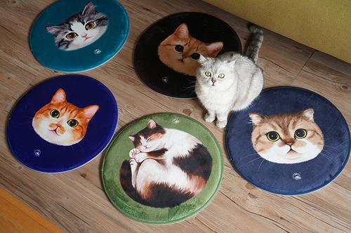 原創可愛貓坐墊地毯