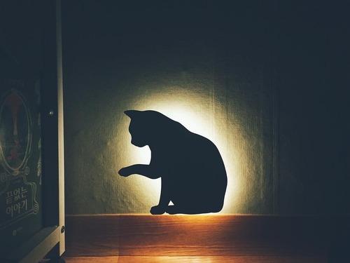 貓咪角落聲控小夜燈
