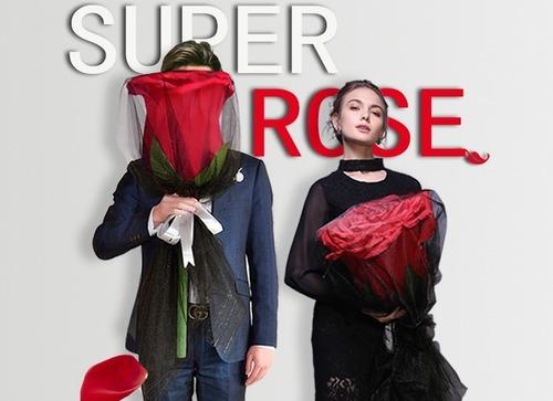 巨型超大玫瑰花束
