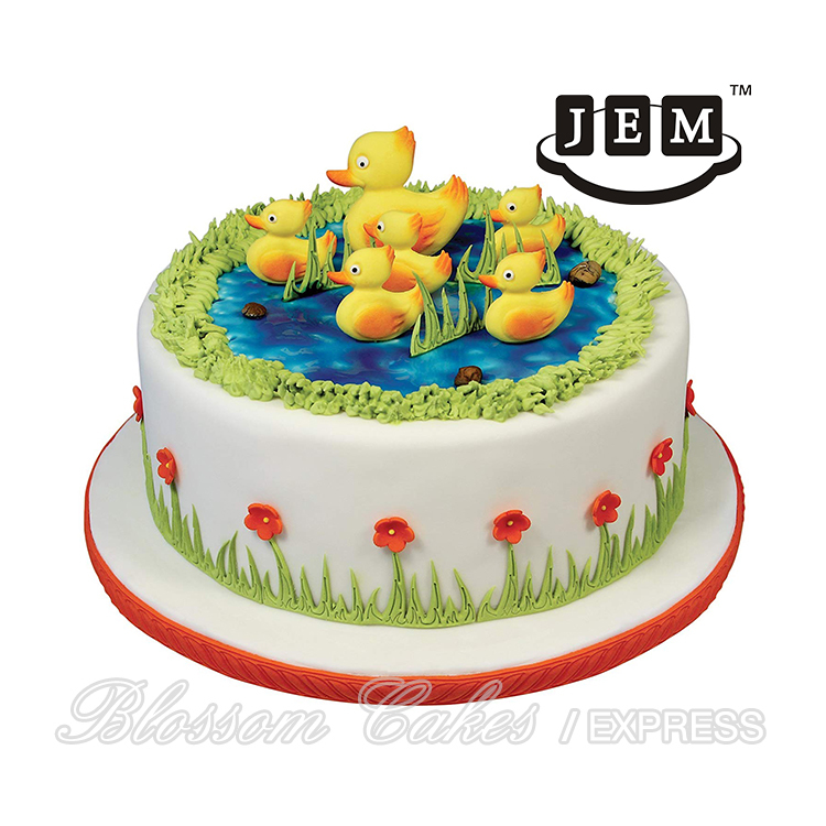 Cake Decorating For Dummies Pdf   Decoratingspecial.com