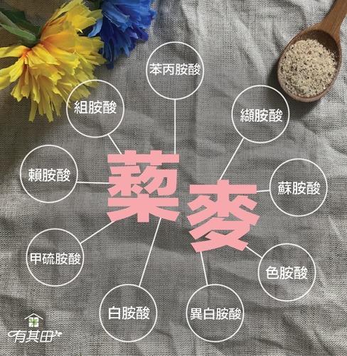 藜麥具有人體無法合成的9種必需胺基酸,包含:苯丙胺酸、纈胺酸、蘇胺酸、色胺酸、異白胺酸、白胺酸、甲硫胺酸、賴胺酸、組胺酸