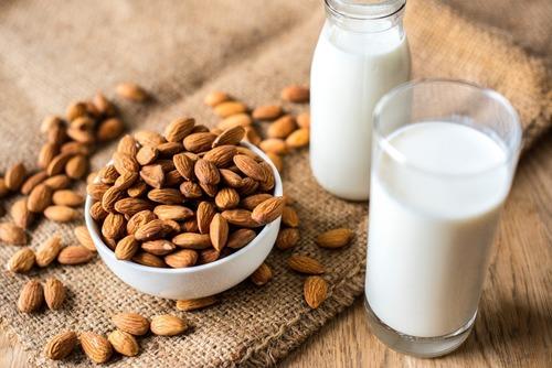 植物性蛋白質vs.動物性蛋白質營養大揭密!破解優質蛋白的錯誤觀念
