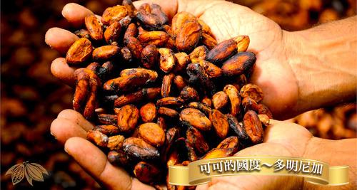 多明尼加可可產量豐富有可可的國度之美稱