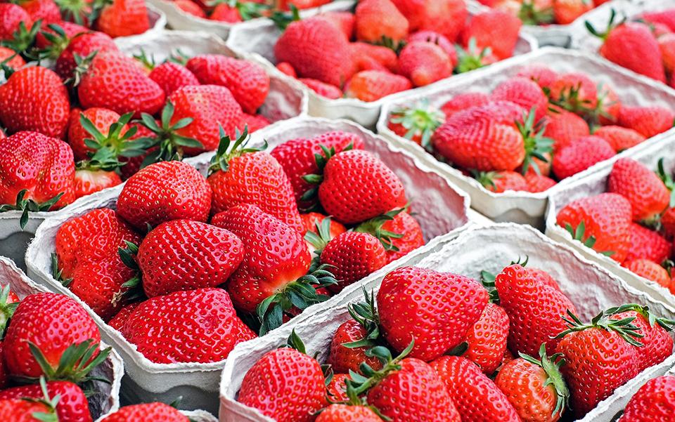 如何挑選好草莓?|1%bakery