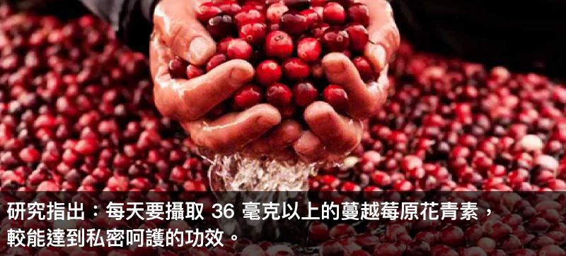 蔓越莓錠功效