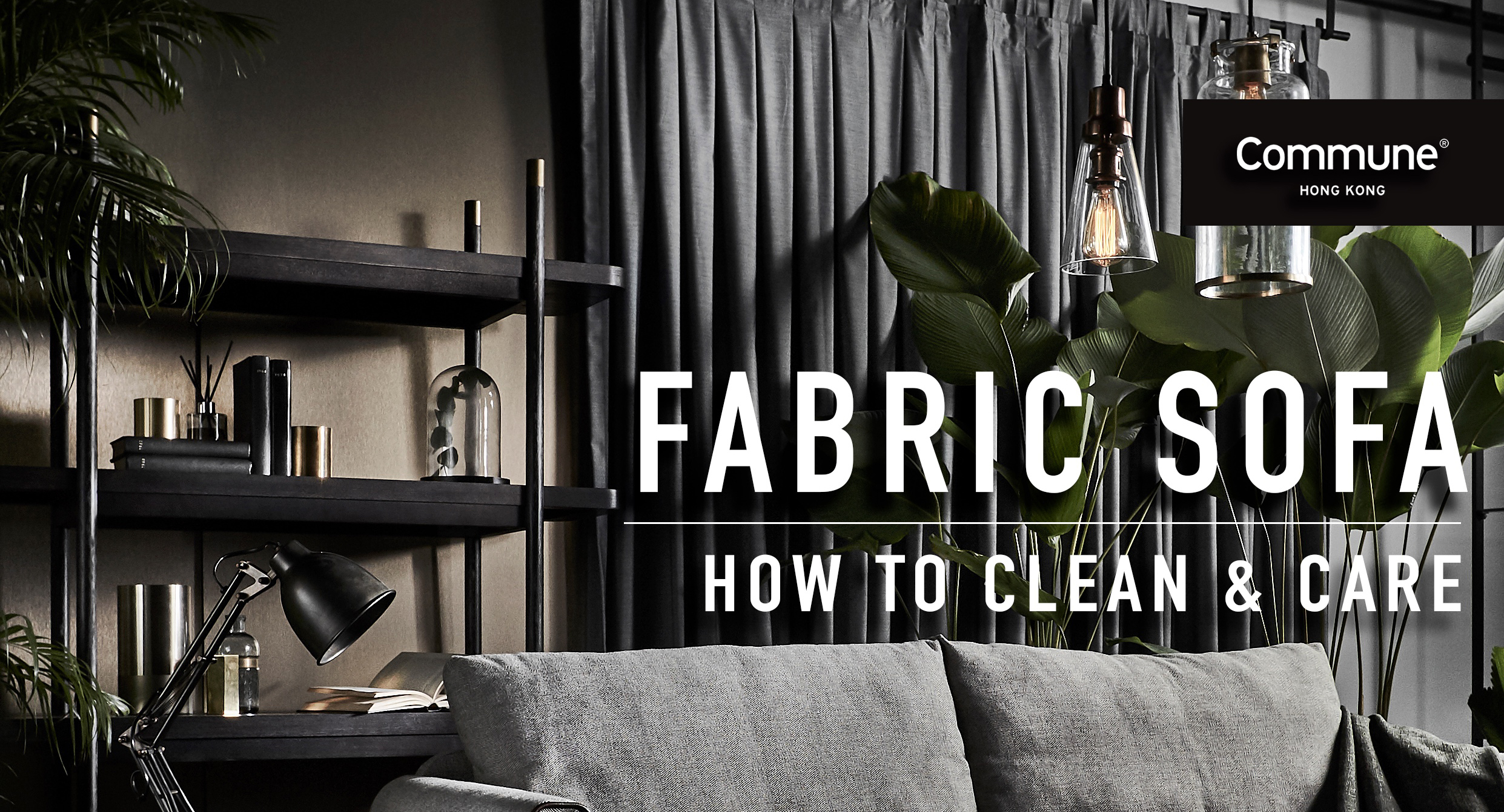 Clean And Remove Dust Mites From Sofa