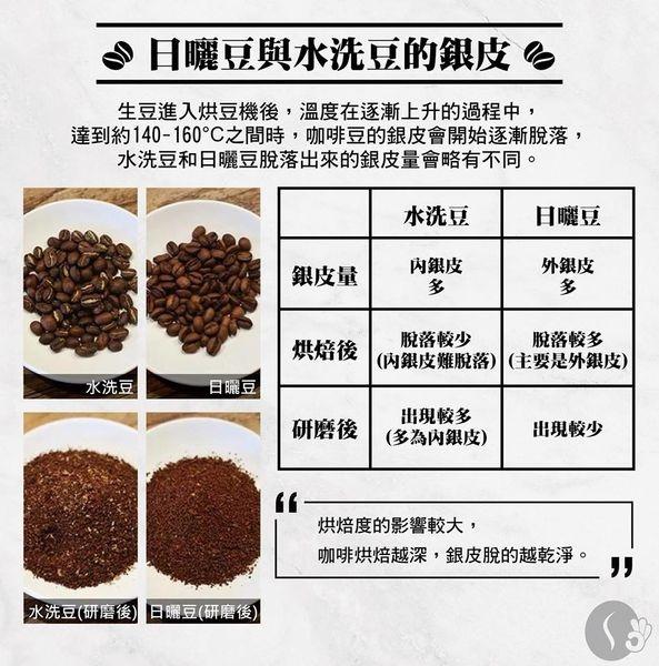 日曬豆汗水洗豆的銀皮 -1