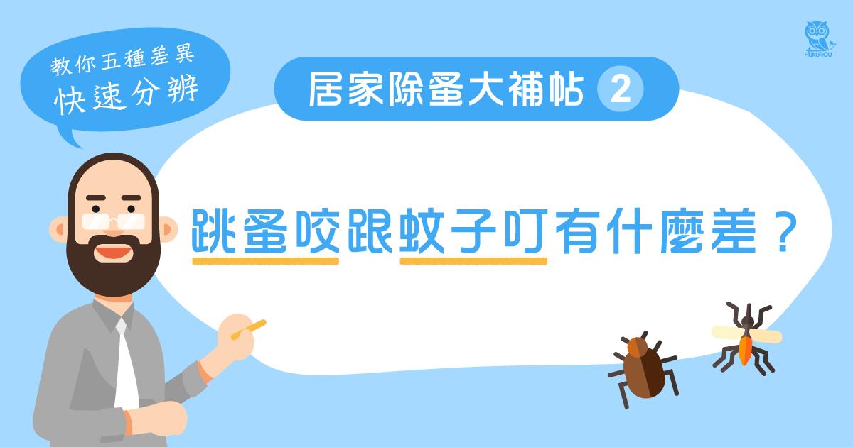居家除蚤大補帖二:跳蚤咬跟蚊子叮有什麼差?