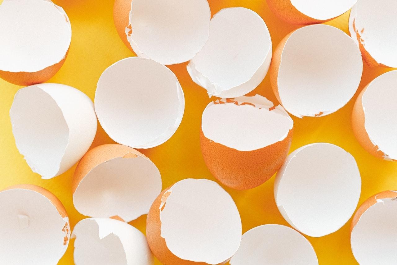 減肥食材雞蛋