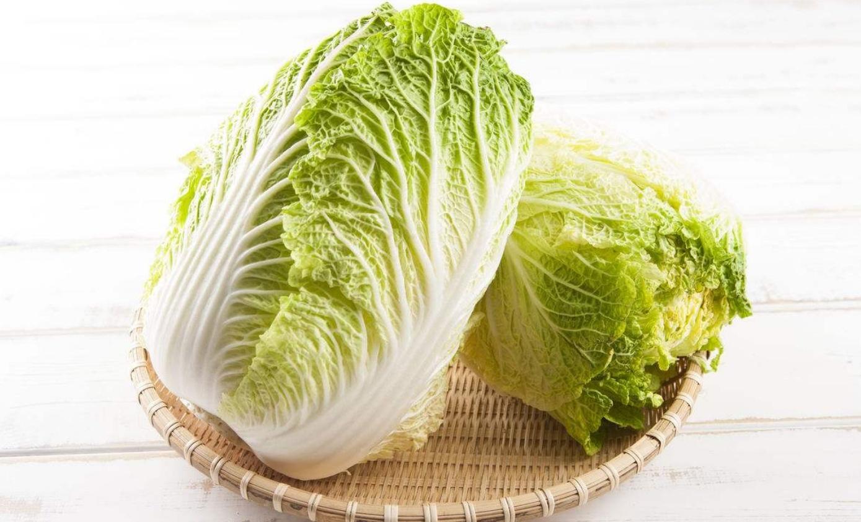 減肥食材大白菜