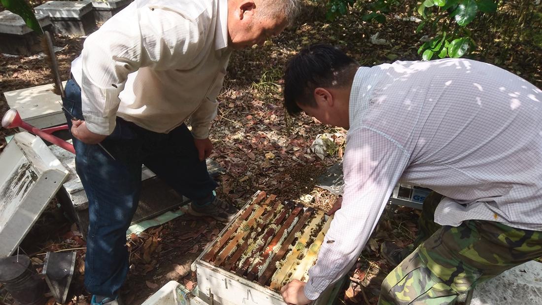 龍眼蜜與荔枝蜜在台灣占據了大部分的蜂蜜市場,身為最受台灣人喜愛的龍眼蜜,也是蜜種中氣味最為濃厚、甜度最為明顯的,但你知道龍眼蜜的產地在哪裡嗎?  隨著溫度變化,龍眼花的花期通常在三到五月的春天開花,從三月的高雄、台南開至四五月的中部地區,逐花而居的蜂農需要將蜜蜂們放置於乾淨無農藥殘留的環境,如果遇上天氣異常或是氣溫擾亂種種因素影響,辛辛苦苦的勞動成果可能就會一無所獲了,沒有想到生活中隨處可見的蜂蜜如此得來不易吧?   蜂樺蜂蜜專賣店