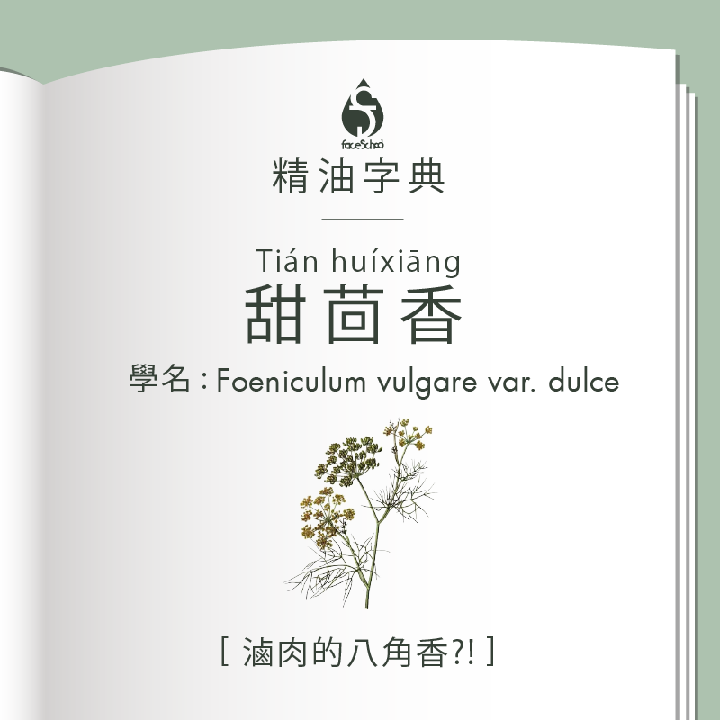 精油字典甜茴香