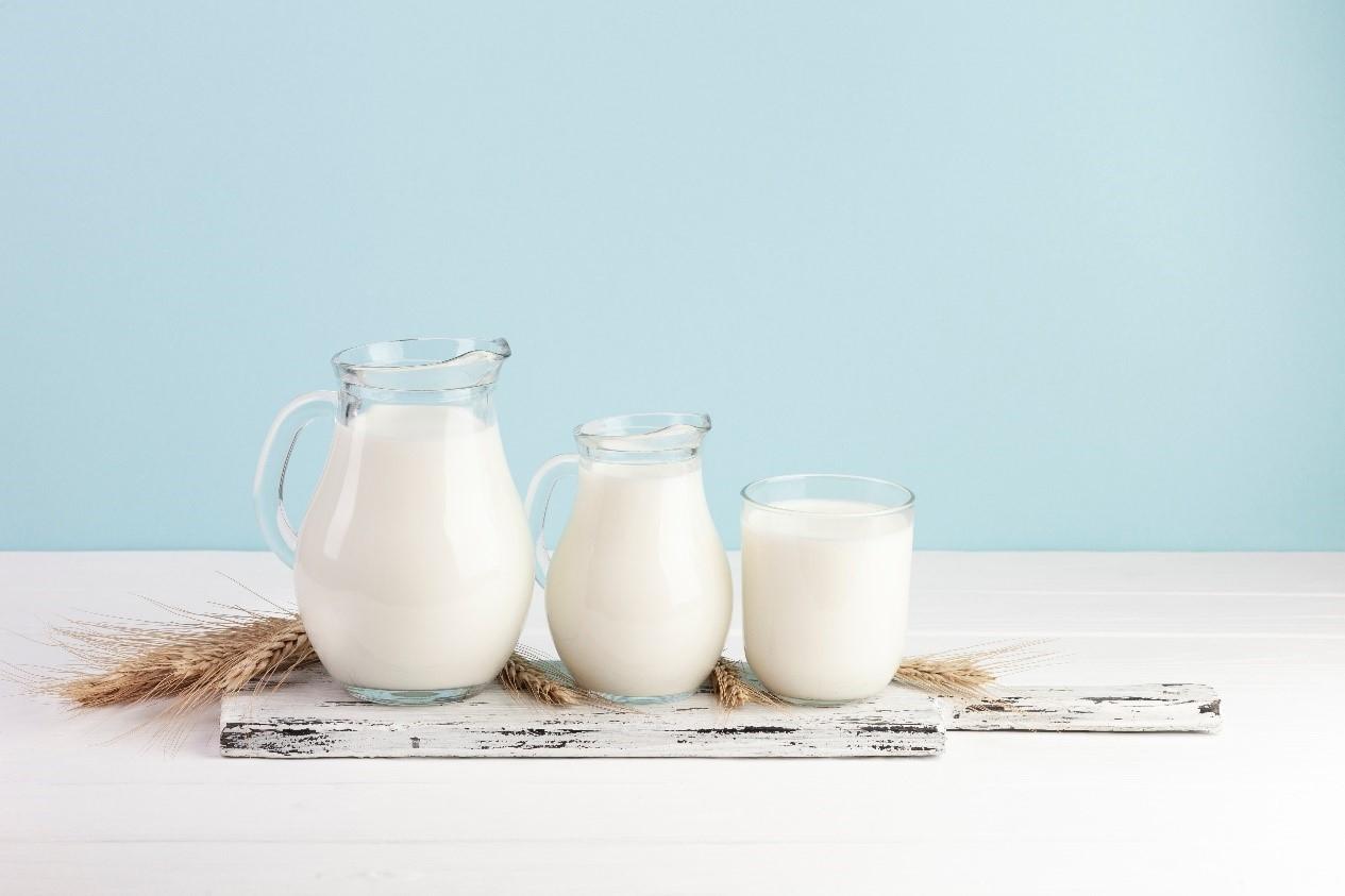 喝植物奶作為植物肉替代
