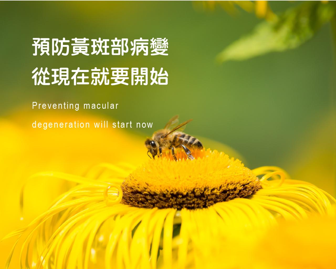 黃斑部病變~預防勝於治療