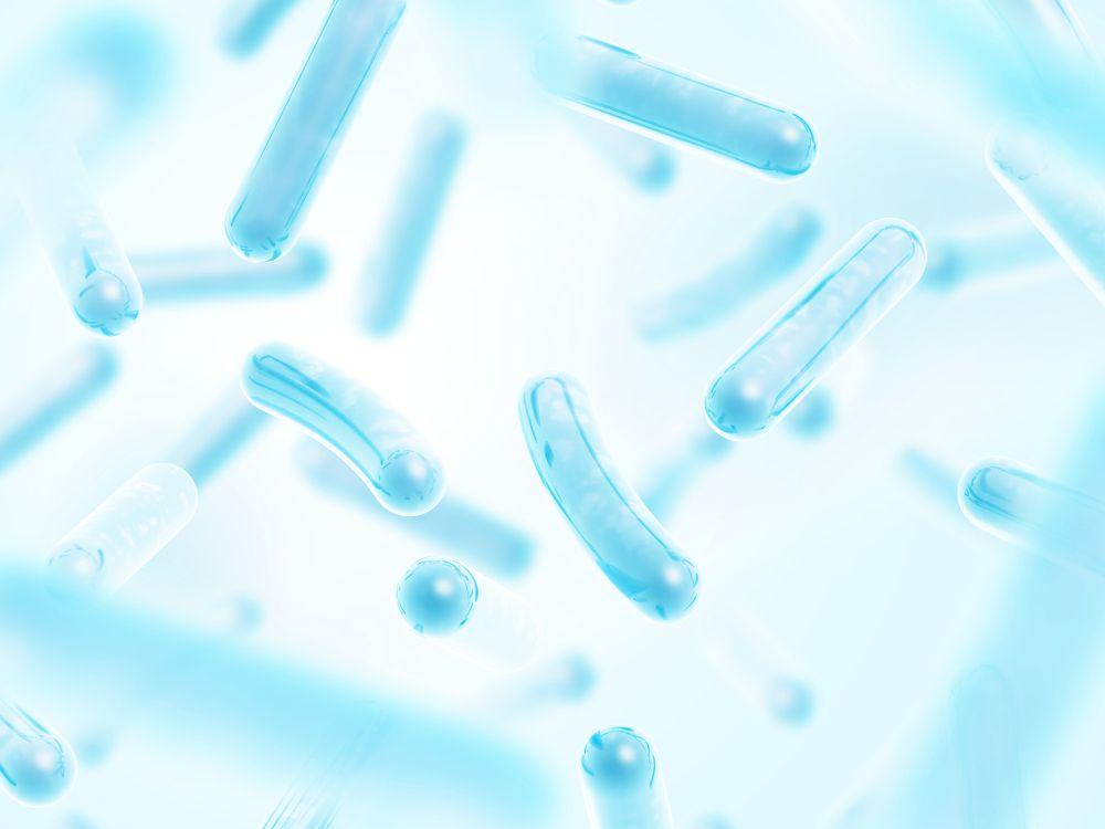 孕婦益生菌