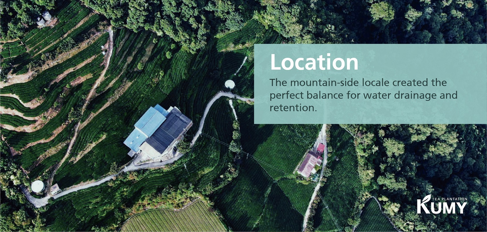 KUMY Tea Plantation Location
