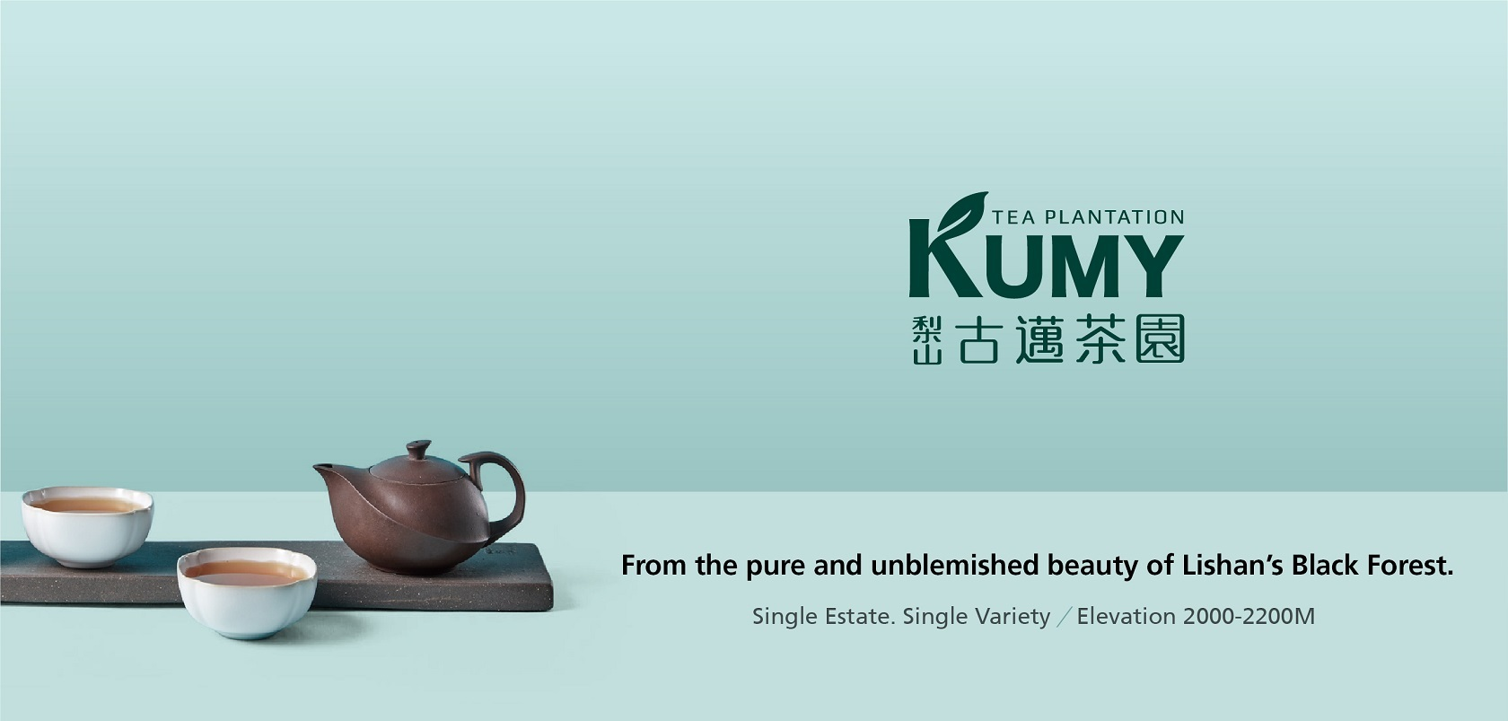 KUMY Tea Plantation
