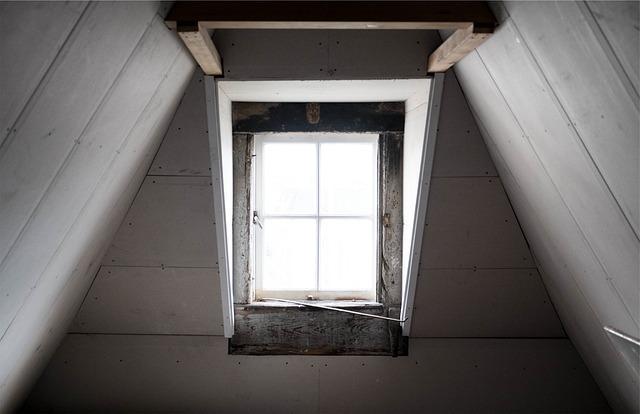 天花板老鼠聲音如何判斷?