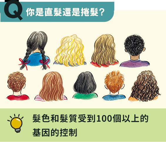 你是直髮還是捲髮?髮色和髮質受到100個以上的基因的控制