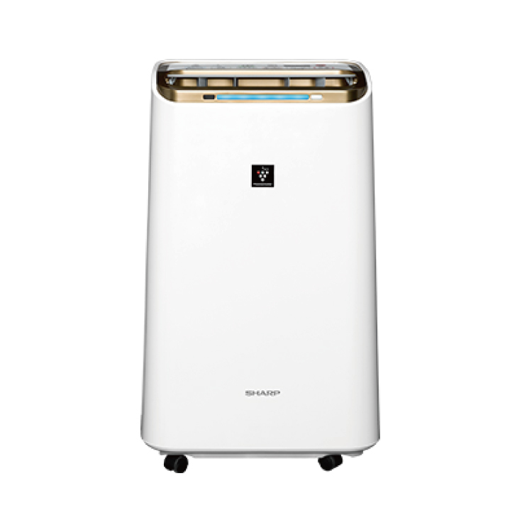 【夏普SHARP】自動除菌離子 空氣清淨除濕機 DW-L12FT-W