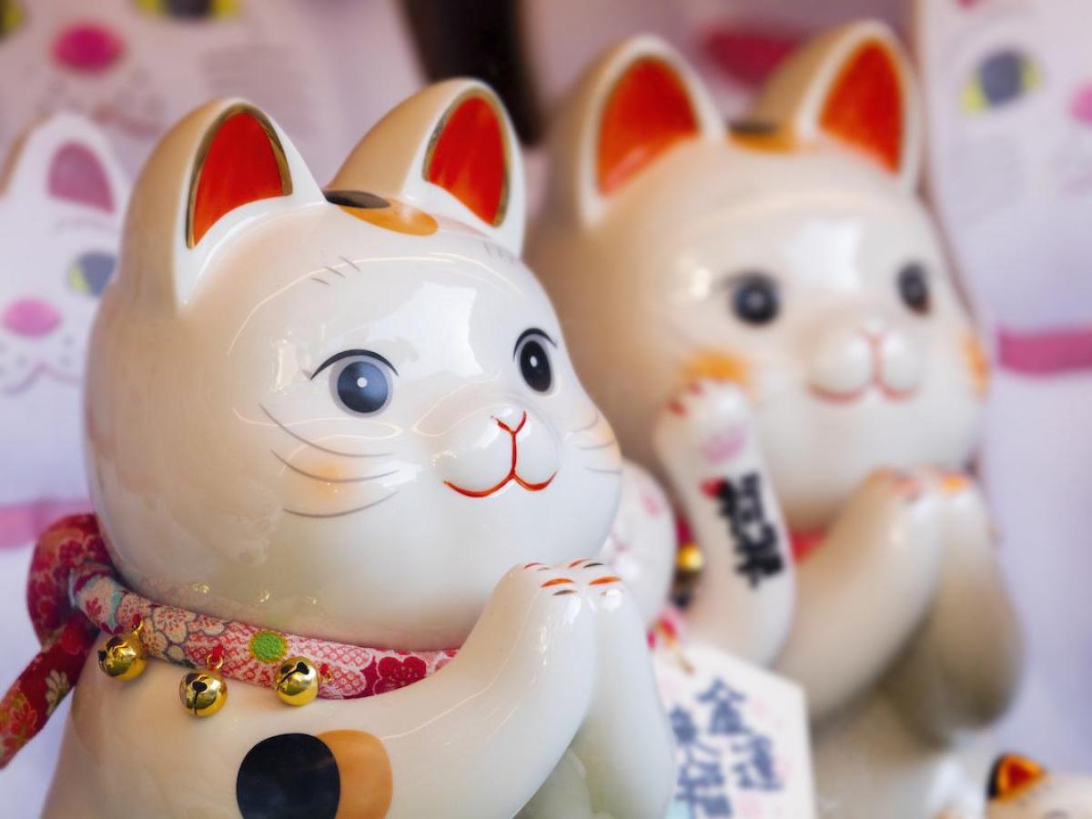 招財貓其實是日本江戶時代一隻貓對主人的報恩。