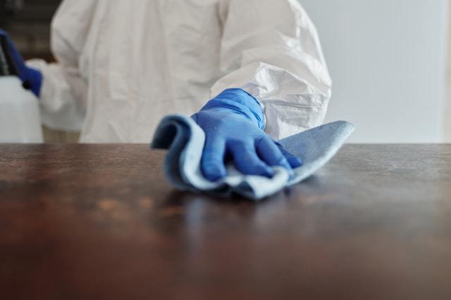 跳蚤怕不怕酒精?定期清潔能否有效遏止跳蚤?