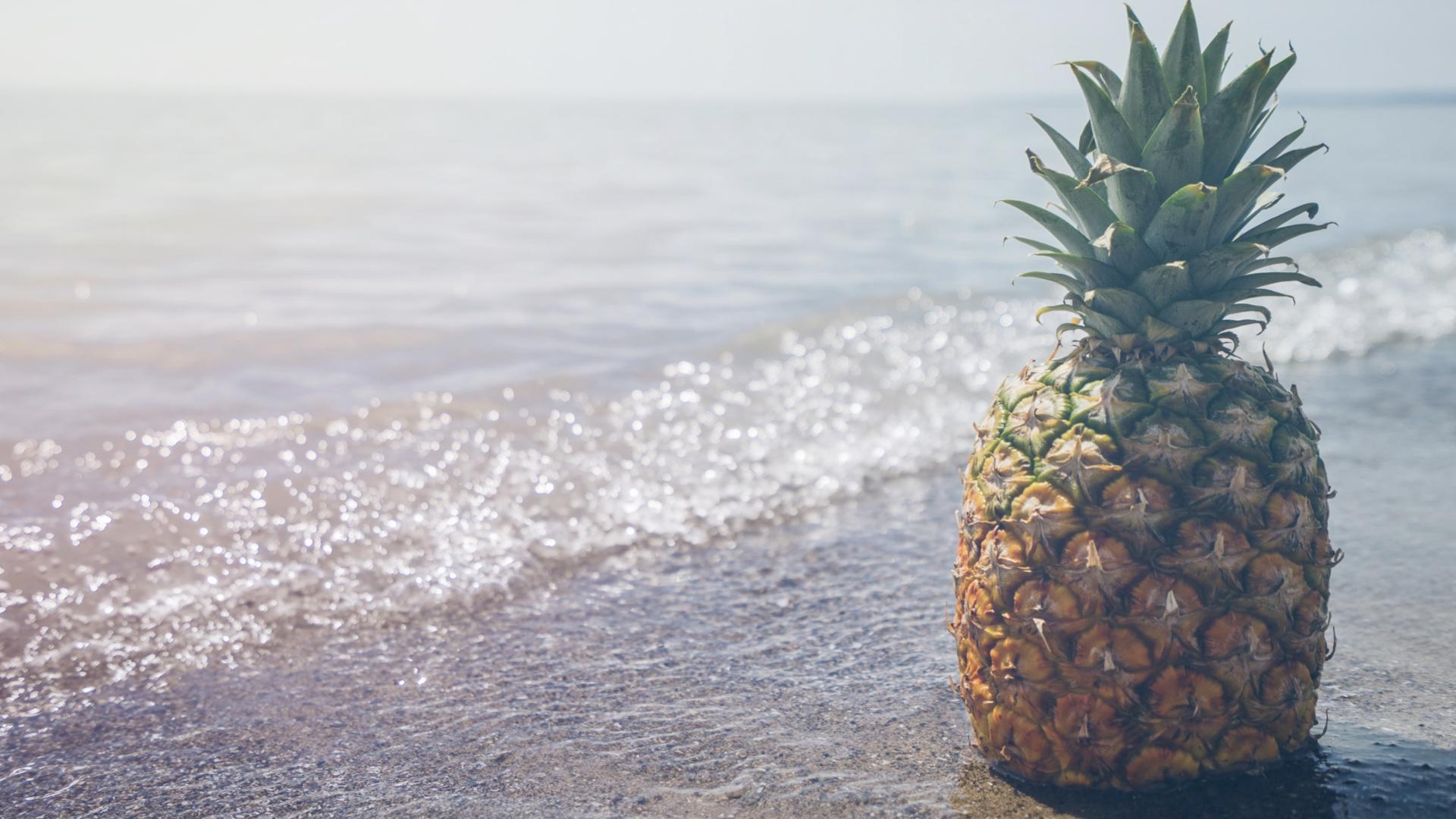 鳳梨於海邊眺望遠方,等待著與蝦仁一同入菜