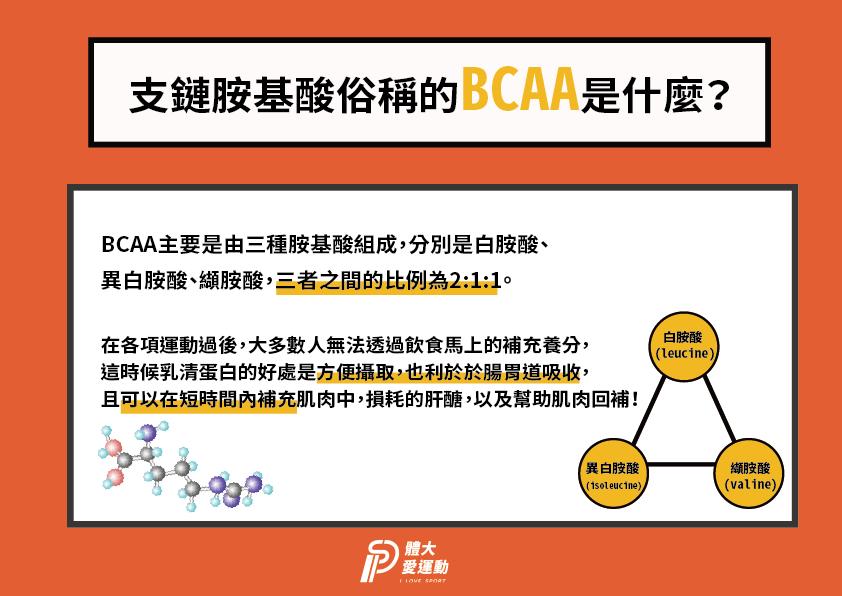 乳清蛋白含有最高比例的BCAA