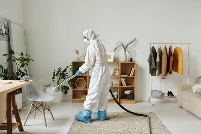 使用白蟻防治藥劑或自行diy方法哪種好?