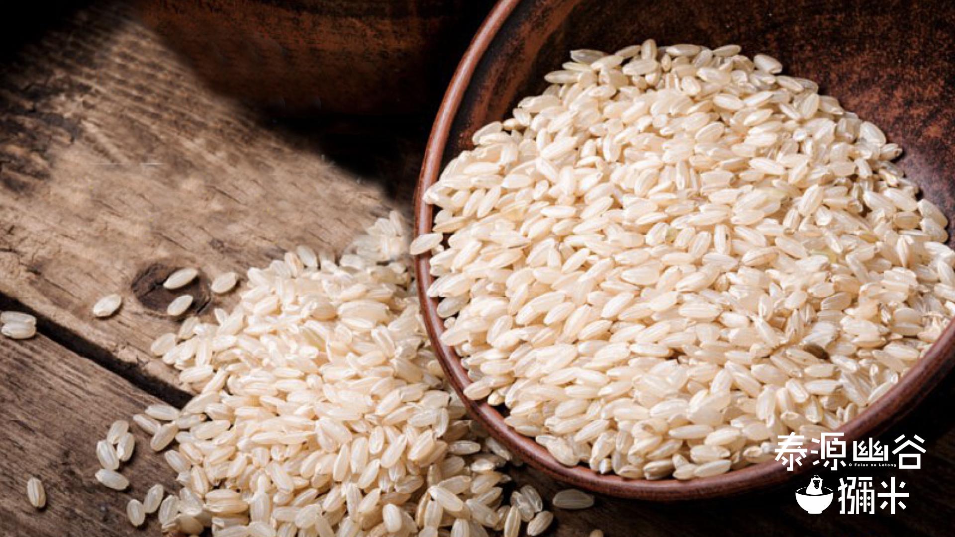 獼米LOGO與一碗傾倒的糙米