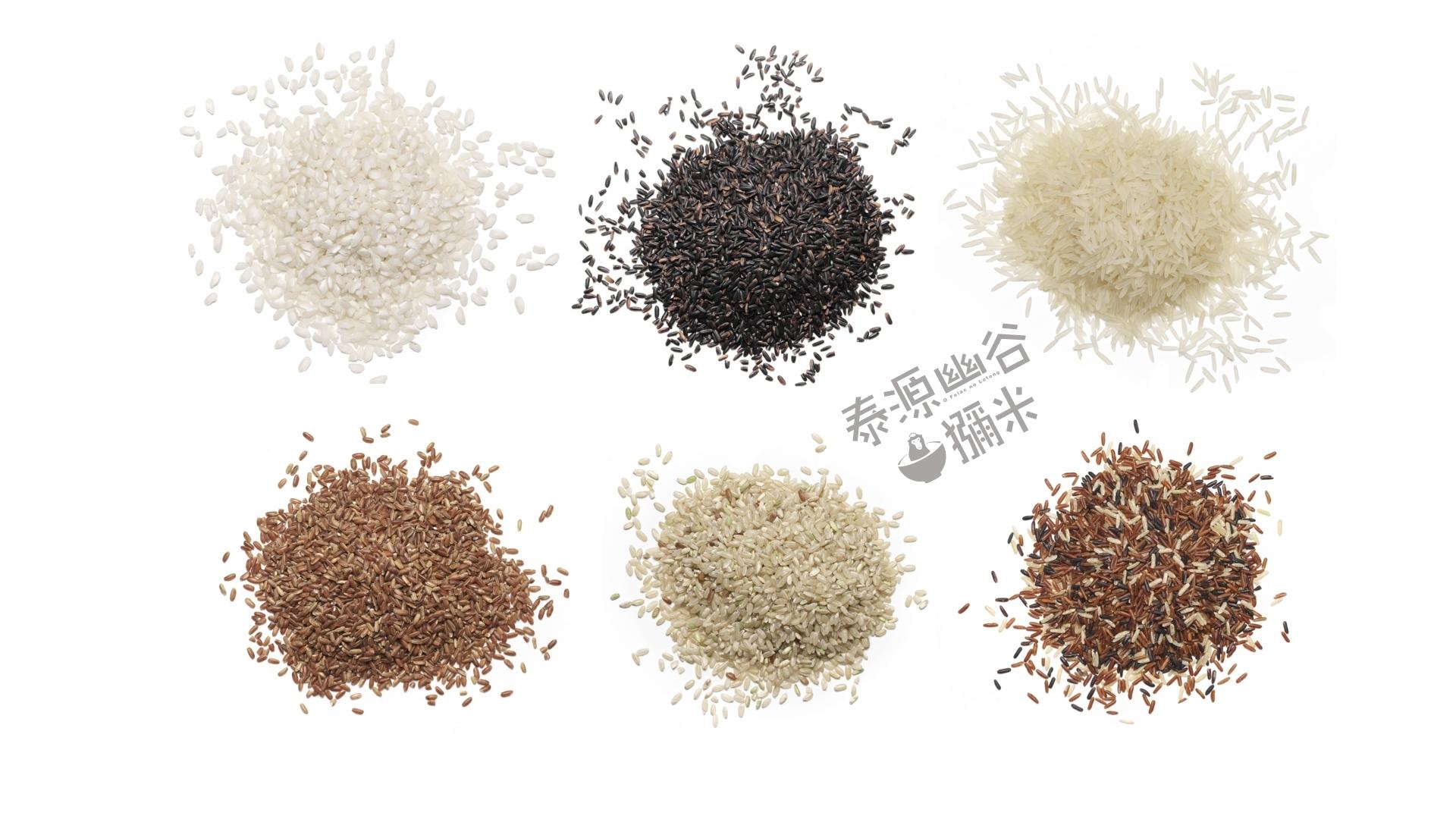 獼米LOGO與六種不同的米種