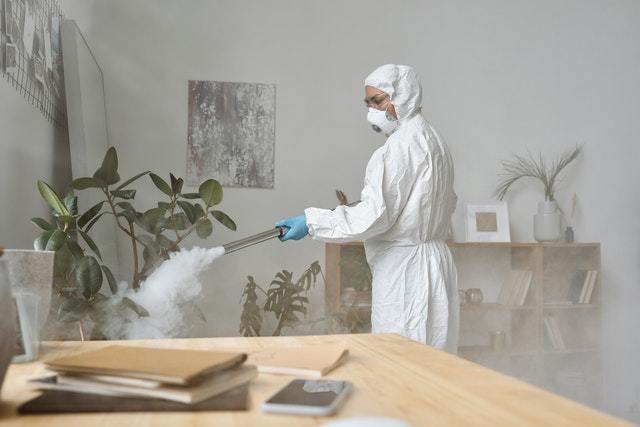 台中除白蟻,要請除蟲公司還是自己可以處理?