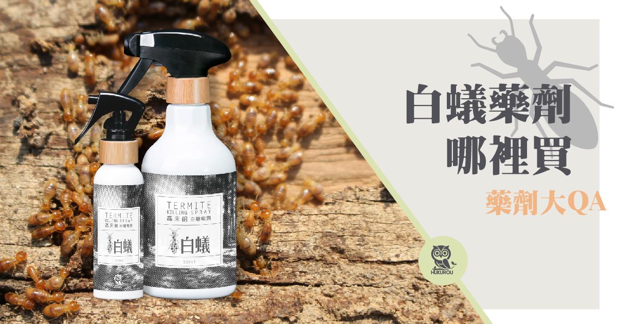 白蟻藥全聯買得到嗎?白蟻藥哪裡買最有用?